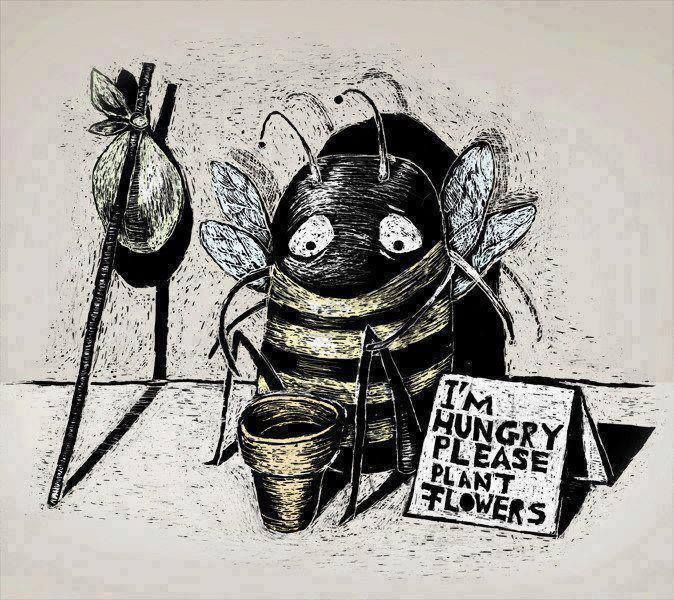 feed the bees :( plant flowers