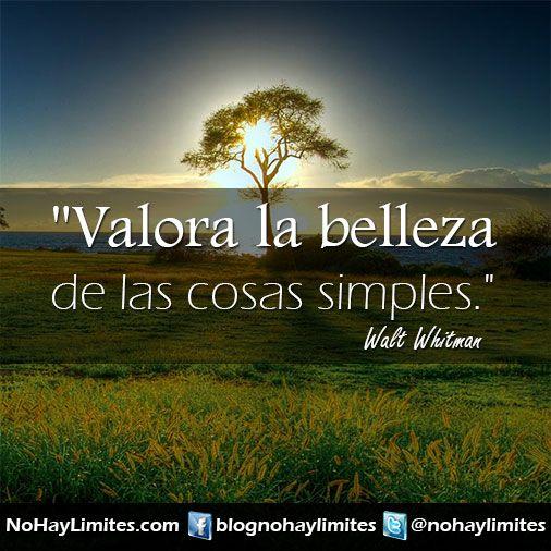 Valora La Belleza De Las Cosas Simples Walt Whitman Walt