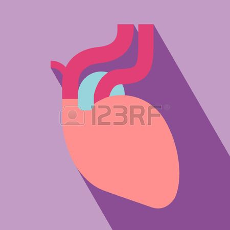 Stock Vector | Icon | Medical background, Human heart, Heart