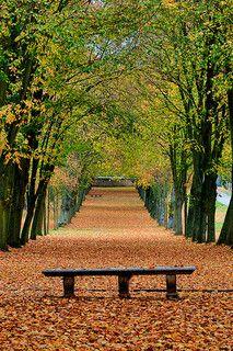 L'automne dans le parc du château de Chamarande, Chamarande, France 2009