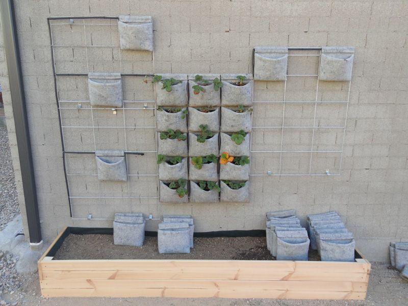 J vertical es la forma mas sencilla de empezar un jard n for Modulo jardin vertical
