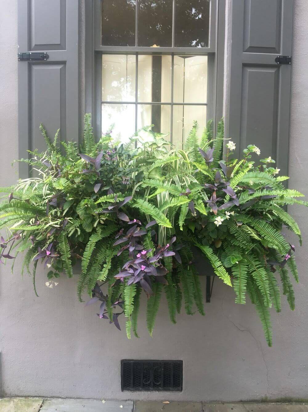 17 Beautiful Window Box Ideas that Will Make Your Window More Stylish