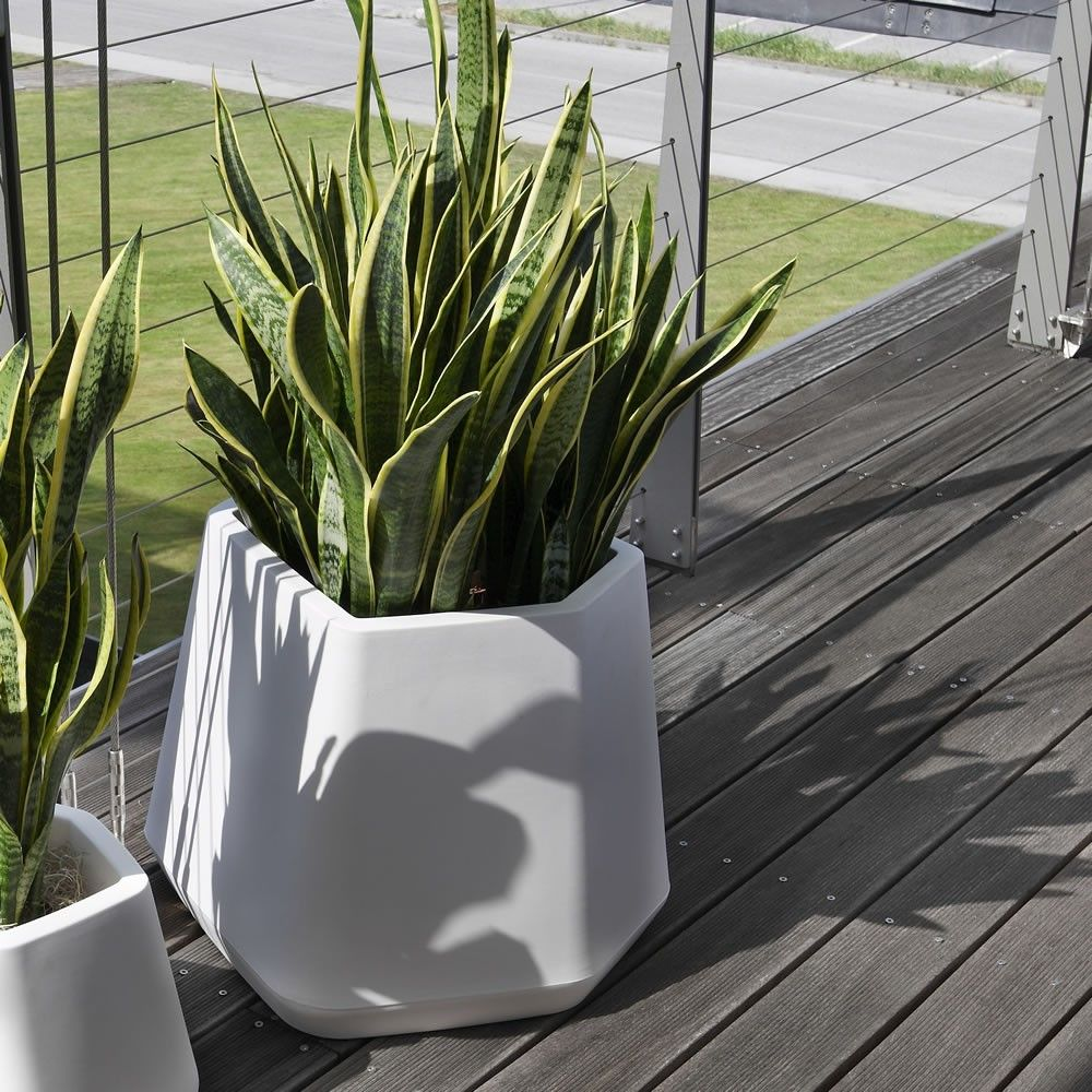 Vasi per piante da interno moderni vasi moderni terricci