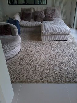 Shag Pile Carpet Inset Into Tiles Very Long Thick