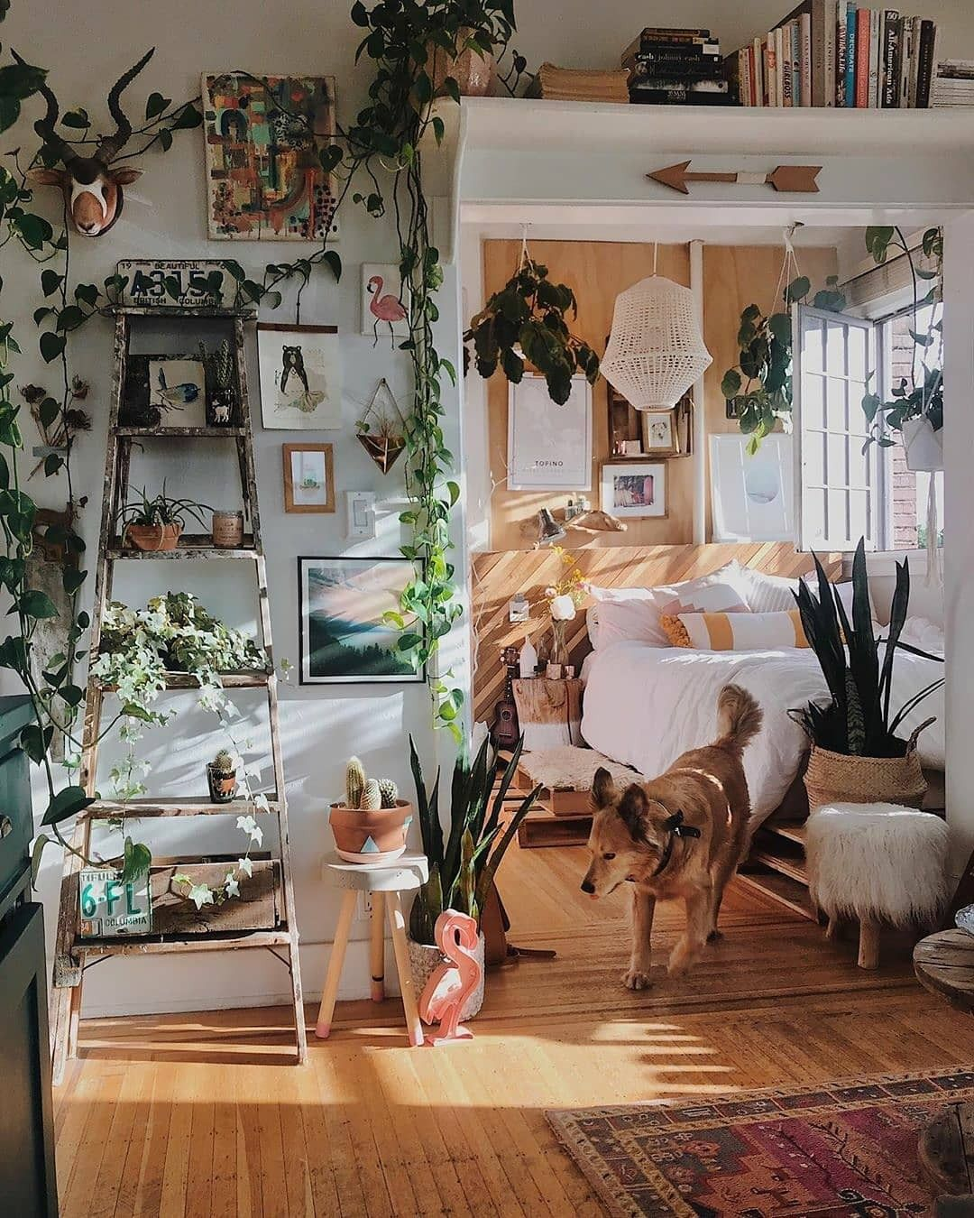 Home Decorating Ideas With Bohemian Style Home Decor Room