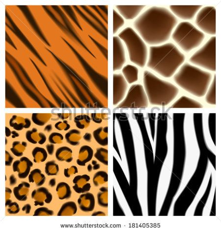 A Set Of Detailed Animal Print Seamless Patterns Or Textures Giraffe Cheetah Or Leopard Zebra And Tiger Skins Animal Print Seamless Patterns Pattern