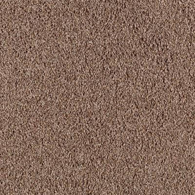 Platinum Plus Immense I Color Gingerbread 12 Ft Carpet 0502d 26 12 The Home Depot Carpet Samples Carpet Classic Carpets