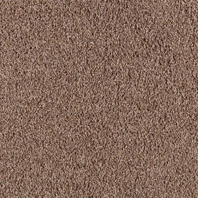 Platinum Plus Immense I Color Gingerbread 12 Ft Carpet 0502d 26 12 The Home Depot Carpet Samples Carpet Classic Carpets