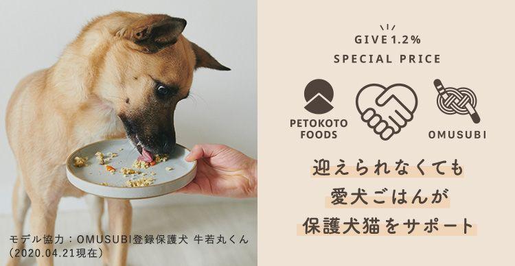 保護犬 保護猫の里親募集サイトomusubi お結び 審査制 里親 保護 犬