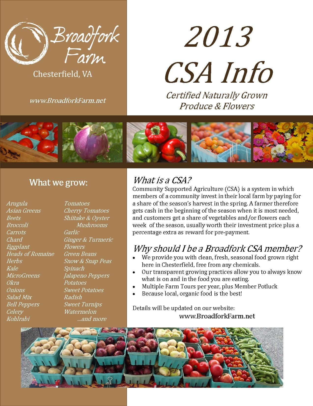 farm flyer template google search csa flyer farm organic csa flyer google search