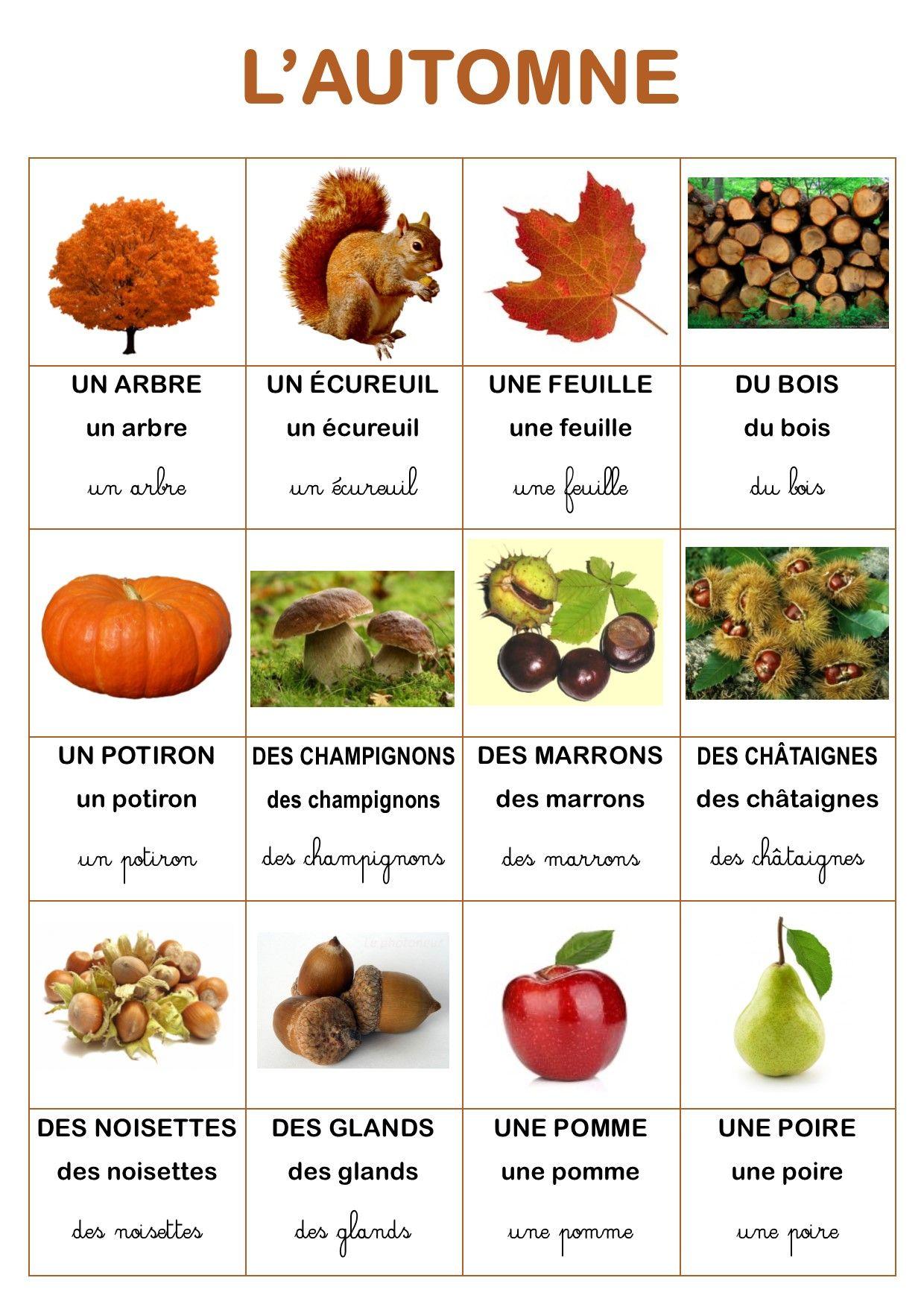 Resultado de imagen de vocabulaire l'automne
