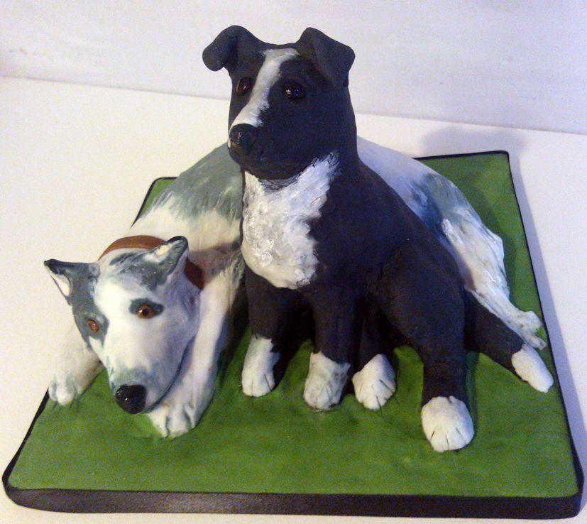 collies cake happyhills cakes