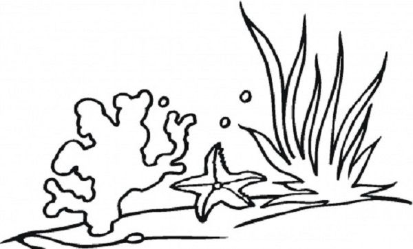 How To Draw Seaweed Coral Reef Drawing Coral Drawing Coloring Pages