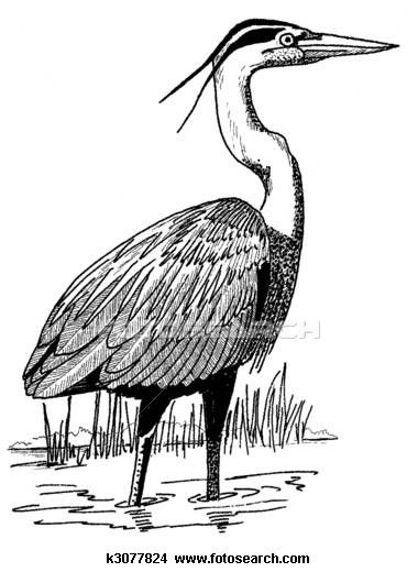 Heron Clip Art And Illustration 332 Clipart Vector EPS Images Available To Search From Over 15 Royalty Free Stock