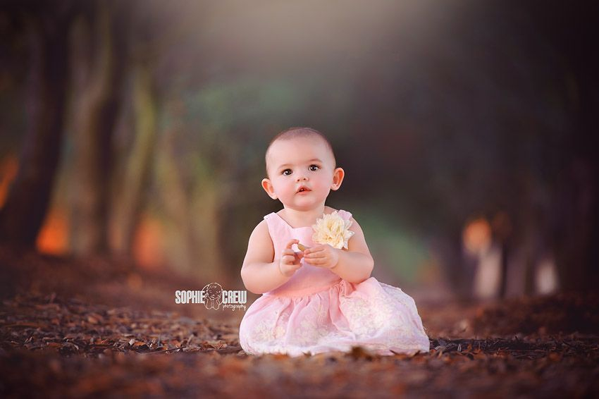 San diego one year baby portrait photography in hallway of trees san diego premiere family · cake smash