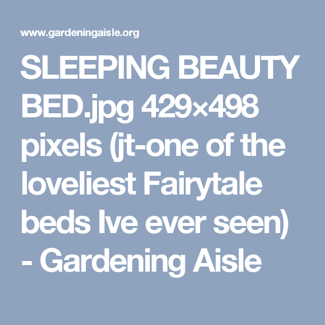 SLEEPING BEAUTY BED.jpg 429×498 pixels (jt-one of the loveliest Fairytale beds Ive ever seen) - Gardening Aisle