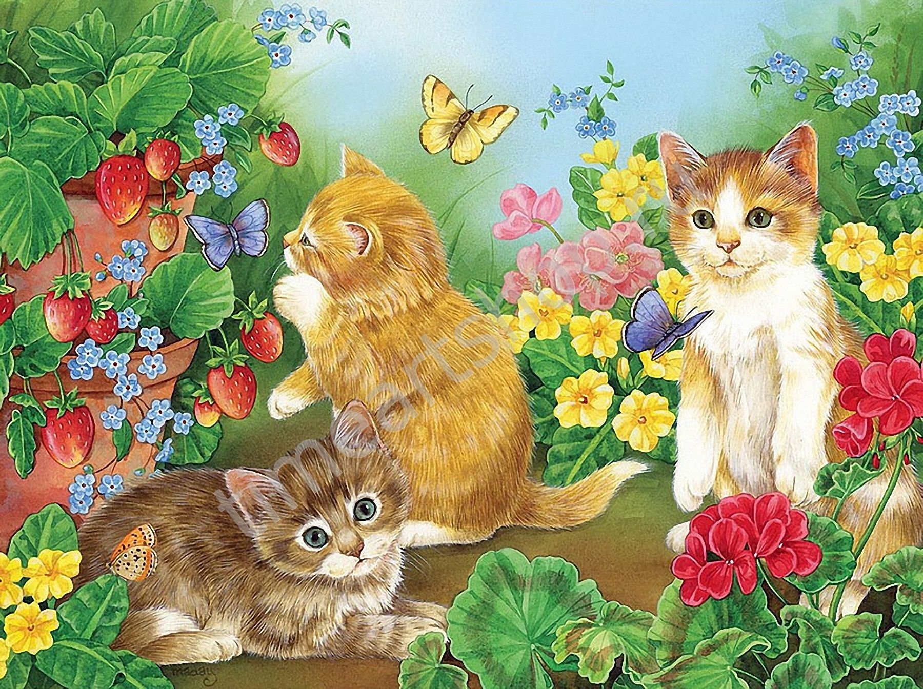 Котята в саду, картина раскраска по номерам, картина ...