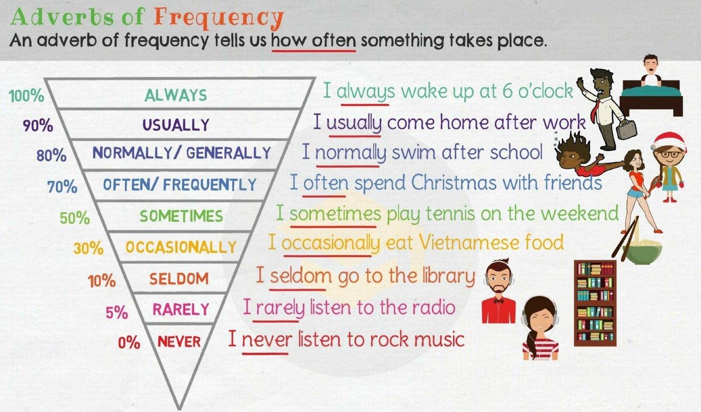 6o Ingles School Rocks