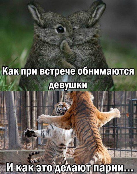 Смешные фотки