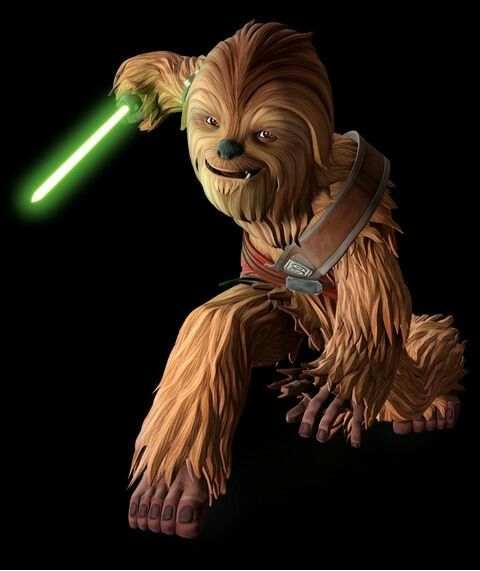 Gungi The Wookiee – Does gungi ever make an appearance, or get mentioned in the comic world?