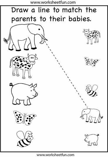 Matching Preschool Worksheets Fun Worksheets For Kids Printable Preschool Worksheets Toddler worksheets printable free