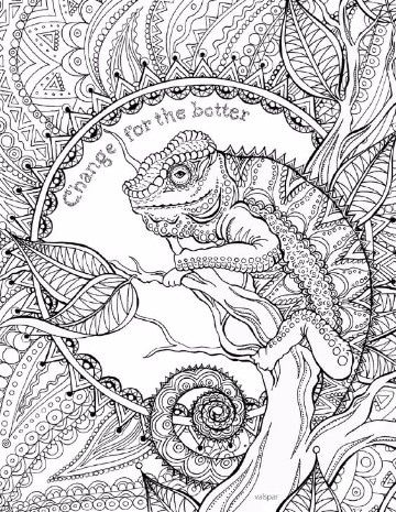 Imagenes De Iguanas Para Colorear A Lapiz A A Animals Dibuj