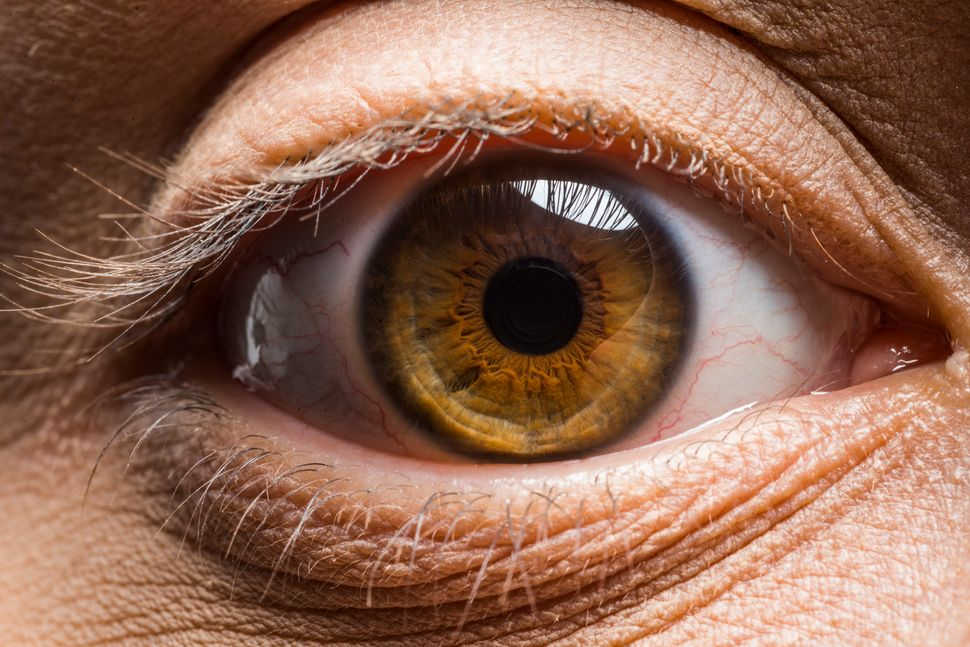 These Macro Photos Reveal The Awesome Diversity Of Human Eyes Huffpost Human Eye Eye Drawing Pretty Eyes