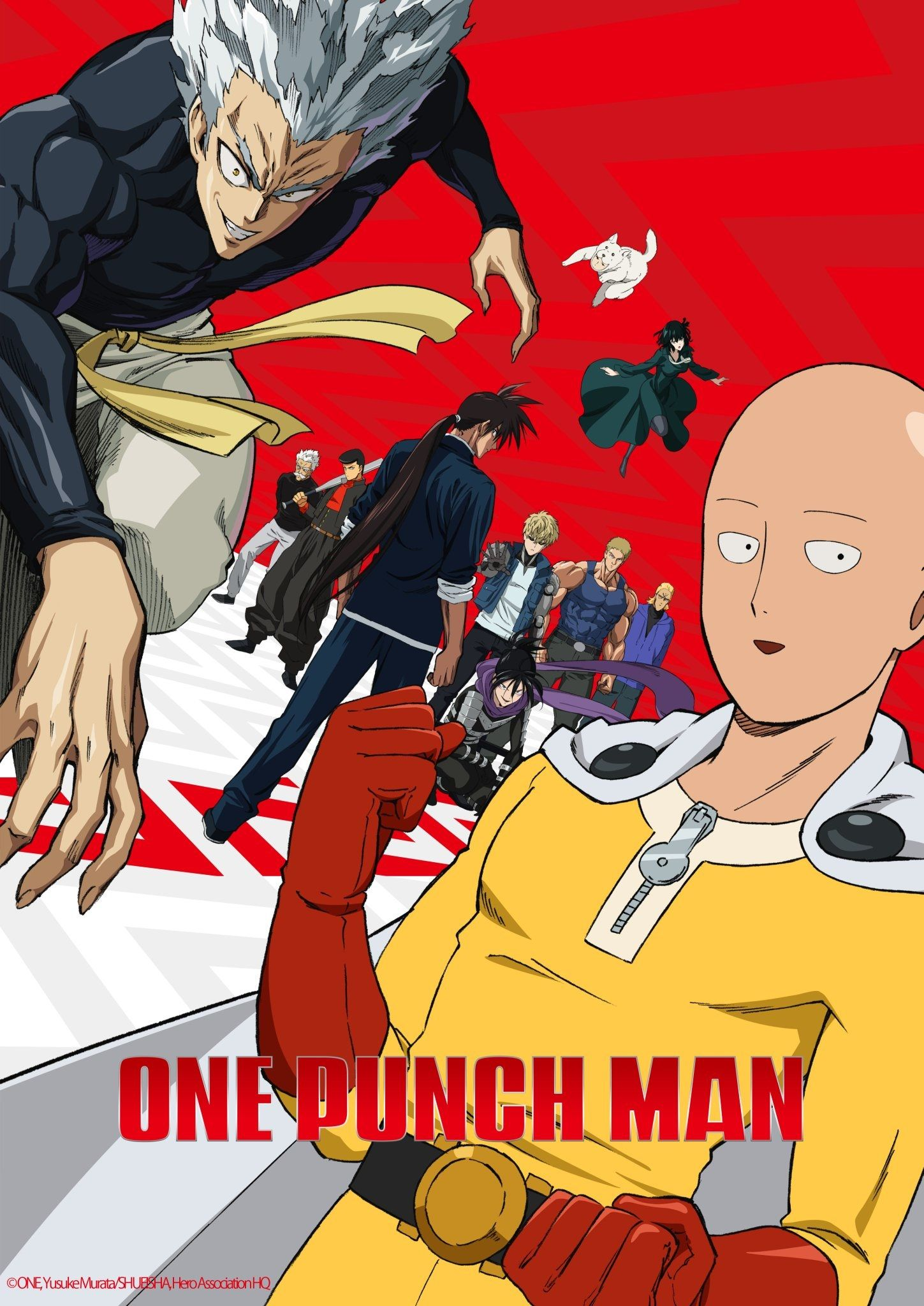 Day 205 One Punch Man Season 2 I Loved This Season I Love The Characters New And Old The Plot Is Still One Punch Man Anime One Punch Man 2 One Punch Man