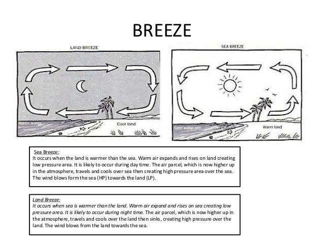 land and sea breeze worksheet - Google Search | Science | 8th grade ...