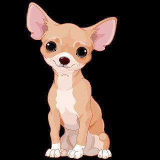 Chihuahua Cartoon Google Searc Chihuahua Cartoon Google Search Chihuahua Drawing Chihuahua Art Dog Drawing