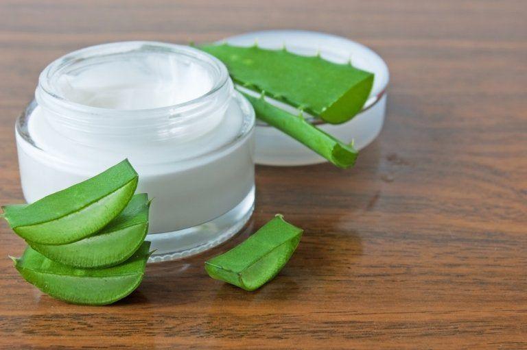 4 Cremas Caseras Con Aloe Vera Que No Debes Perderte Crema De Aloe Vera Cremas Faciales Cremas Faciales Caseras