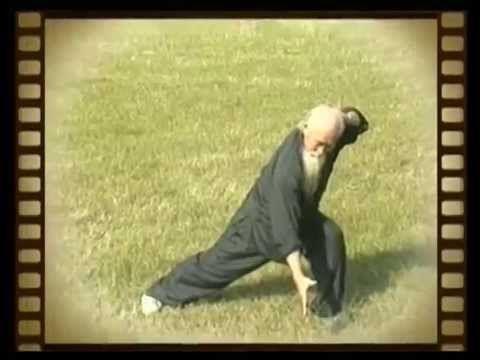 Daoist/ Bagua Master Lu Zijian (117) - Taiyi Huolong Palm