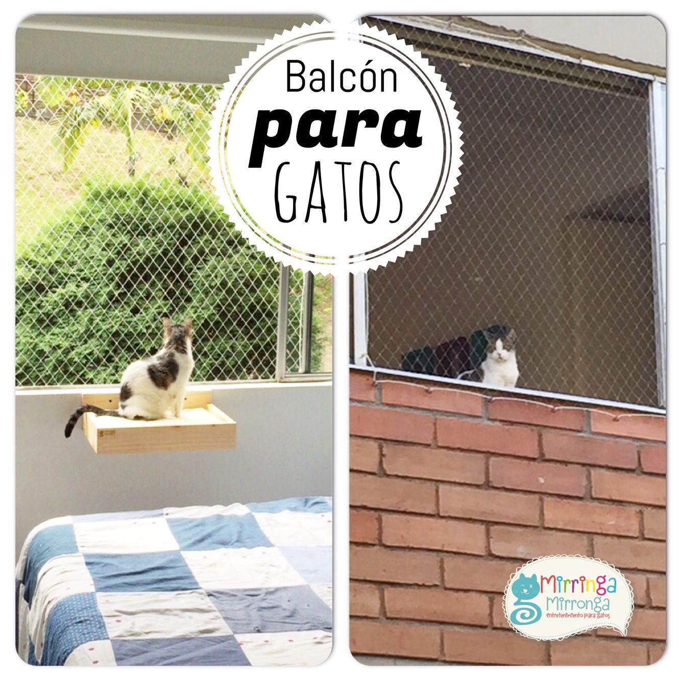 Balcón para gatos