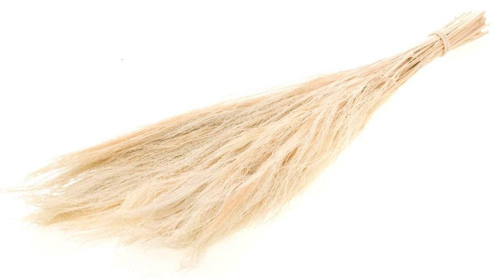 Dried Flowers Broom Grass Bleached White In 2020 Dried Flowers Dried Bouquet Dried Flower Bouquet