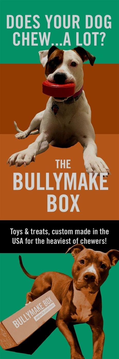 Dog Training Collar Metal Dog Training Tulsa Dog Training