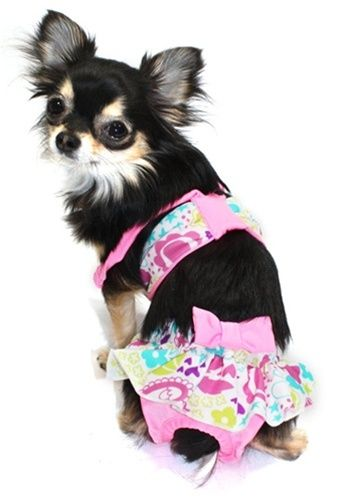 Lol 19 Adorable Pets In Bathing Suits Dog Clothes Puppy