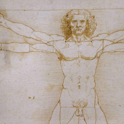 Leonardo Da Vinci S Vitruvian Man Cleared To Go To The Louvre Vitruvian Man Renaissance Artists Famous Artwork