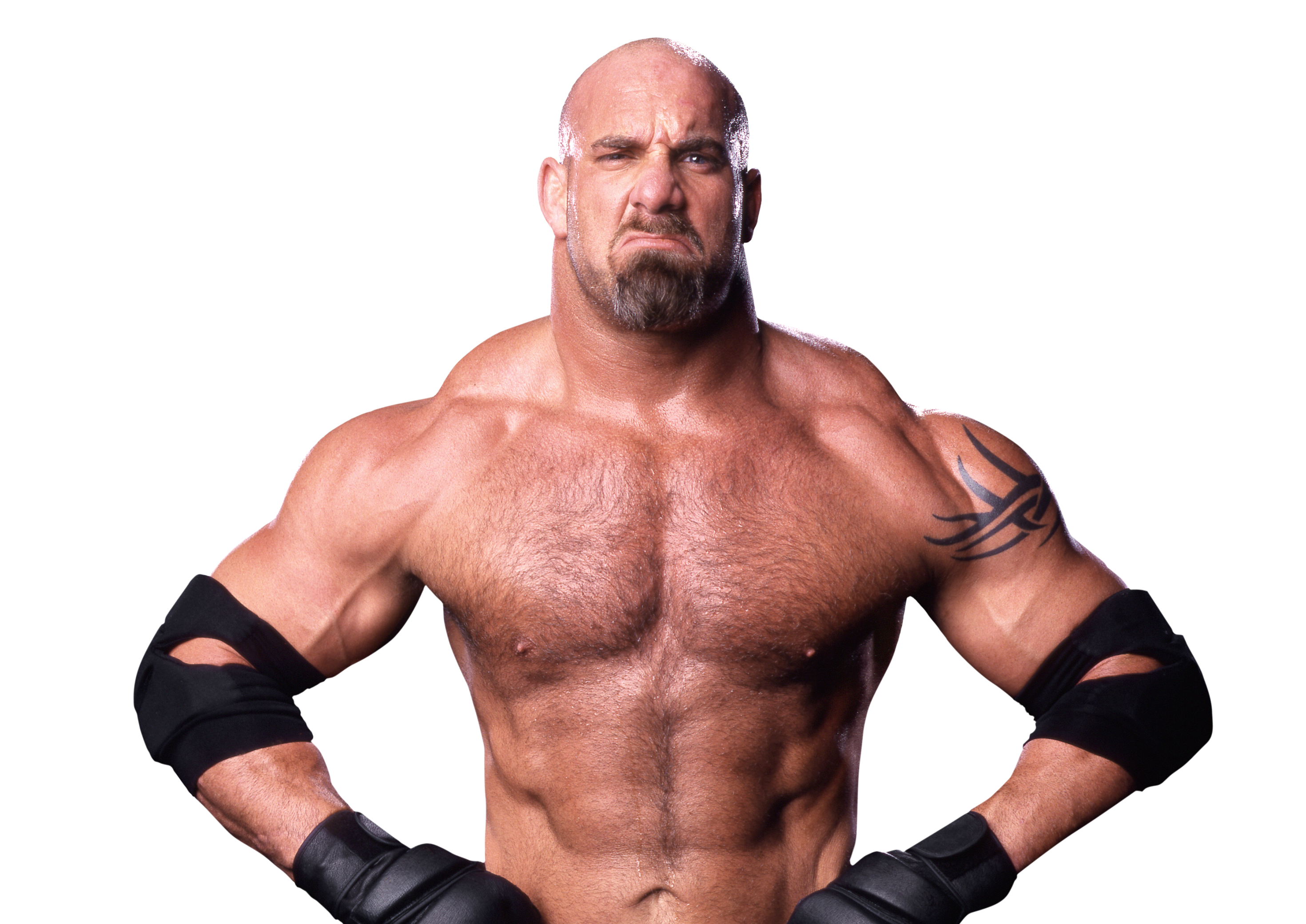 Goldberg Wcw World Heavyweight Championship World Championship Wrestling Muscle Men