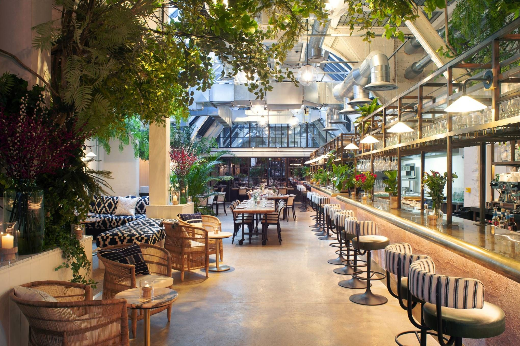 Restaurant of the Week Wild by Tart, the latest venture