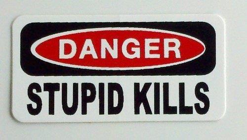 Stupid Kills Funny Vinyl Hard Hat  Helmet Sticker Decal Great for a Construction