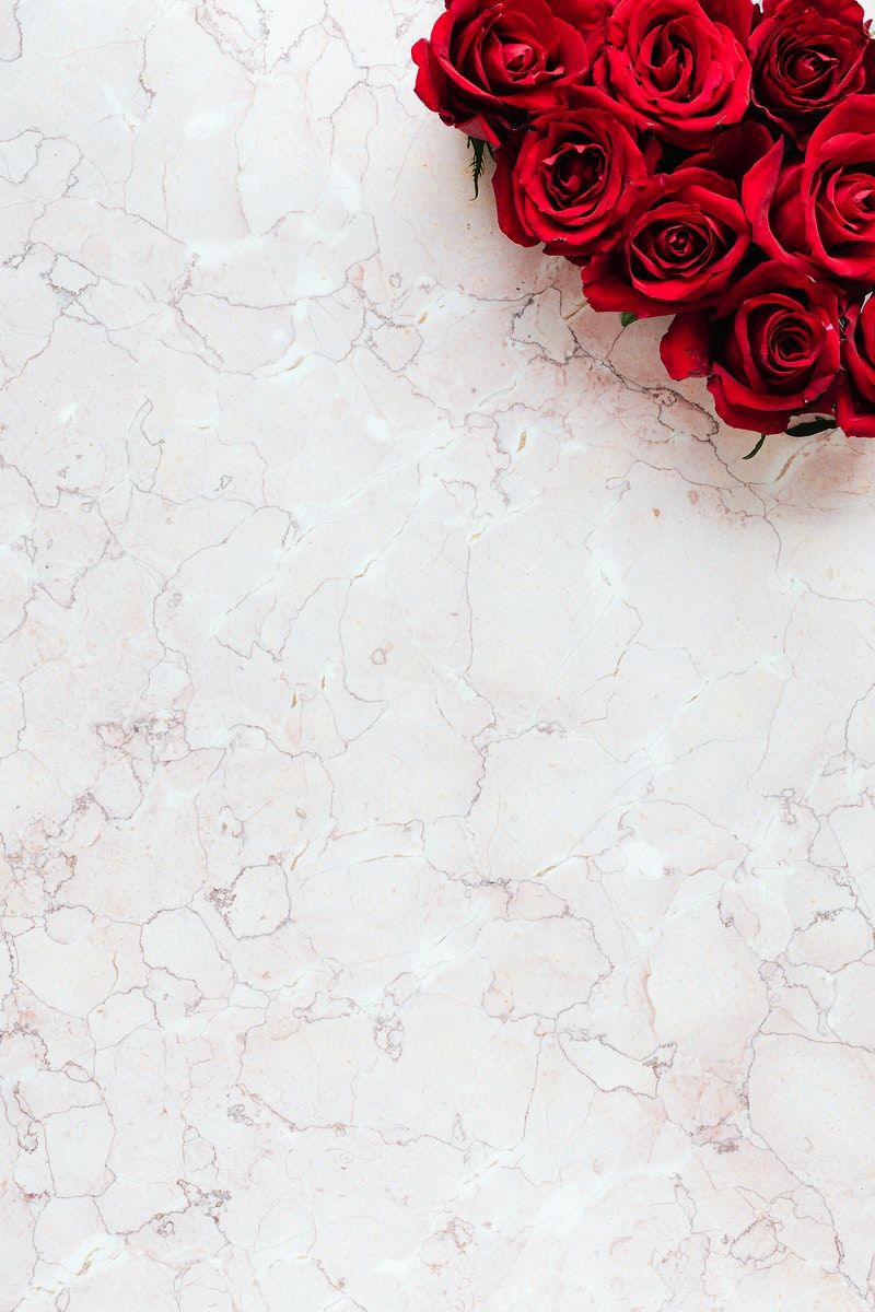 Download free image of Box of red roses in a pink background  by Karolina / Kaboompics about roses, valentine, valentines day, marble, and red roses 2091755