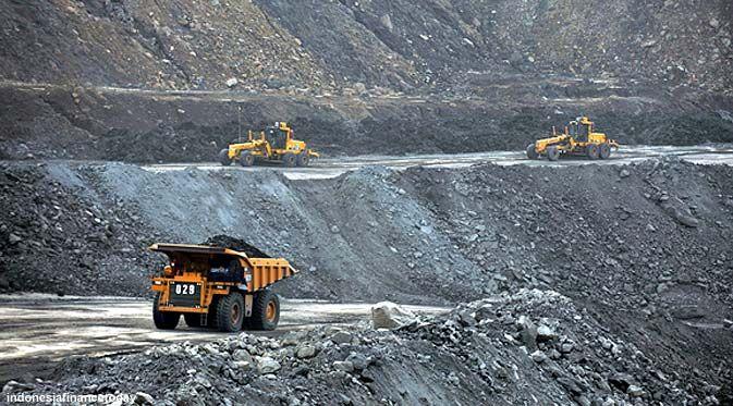 Lahan Pertambangan Batubara Nasional Bertambah Pemandangan Jenis Pendidikan