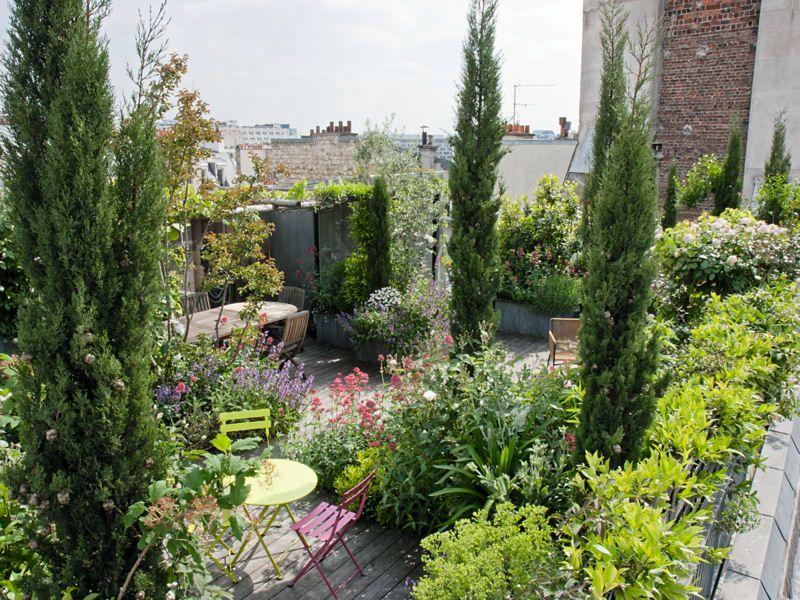 Un toit-terrasse verdoyant en plein Paris | Terrasses, Paris et Patios