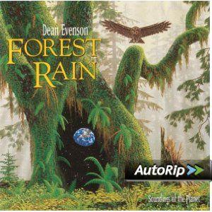 Forest Rain --- http://www.amazon.com/Forest-Rain-Dean-Evenson/dp/B0000017QZ/?tag=jayb4903-20
