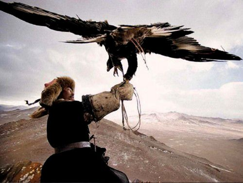 Mongolia The horsemen of Mongolia have long used birds of prey to help them spot game for hunting on the wide open prairies.