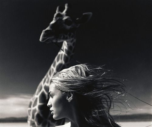 Beauty and The Beast by Michel Comte