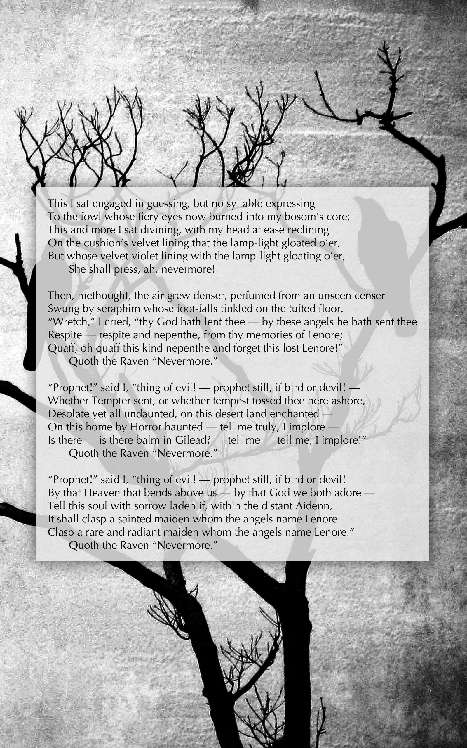 The Raven Part 4 Edgar Allan Poe S Illustrated Poem By Author De Anima Book Editor Hubert Poetry