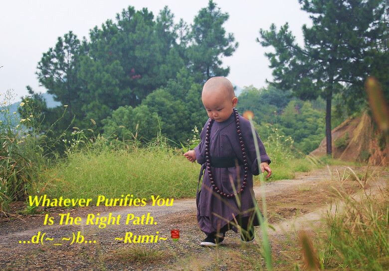 Whatever Purifies You Is The Right Path. ...d(~_~)b...  ~Rumi~