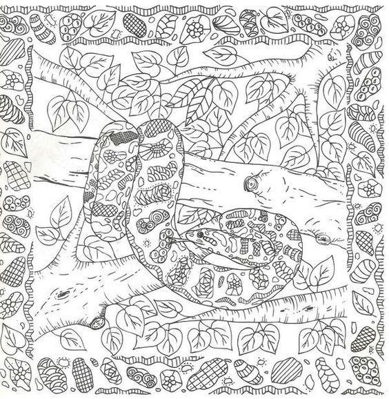 Pin von Barbara auf coloring reptile | Pinterest