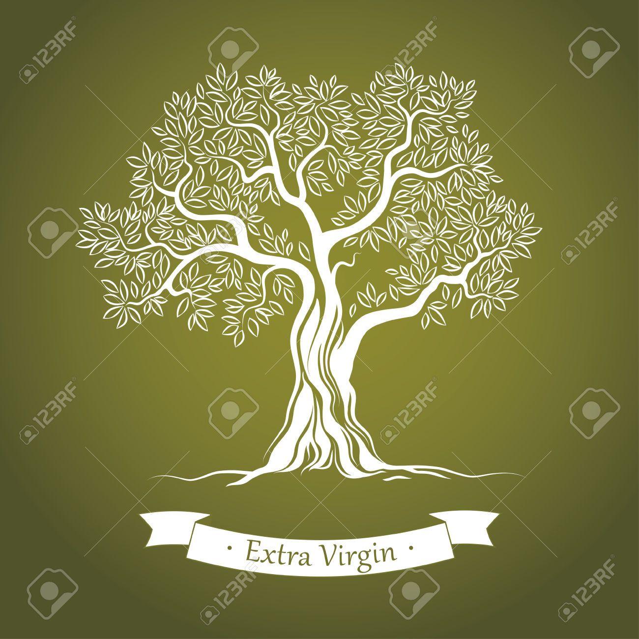 Arbol del olivo google search israel alberi e paesaggi for Albero ulivo vettoriale